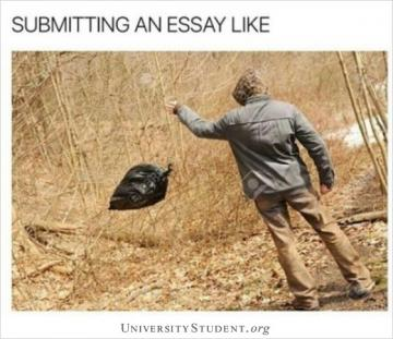 Submitting an essay like