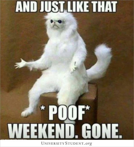 And just like that poof weekend gone