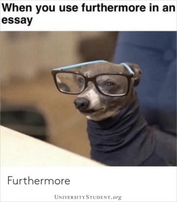 When you use furthermore in an essay