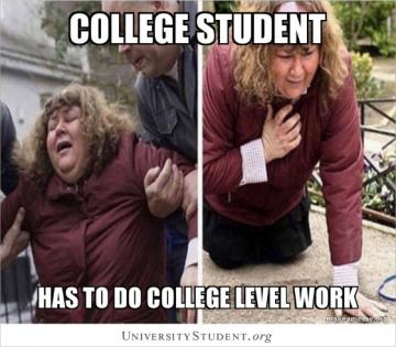 College student has to do college level work