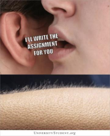 I'll write that assignment for you