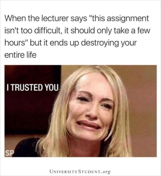 """When the lecturer says """"this assignment isn't too difficult, it should only take a few hours"""" but it ends up destroying your life. I trusted you."""