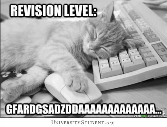 Revision level cat