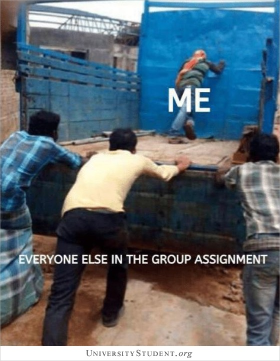 Everyone else in the group assignment. Me.