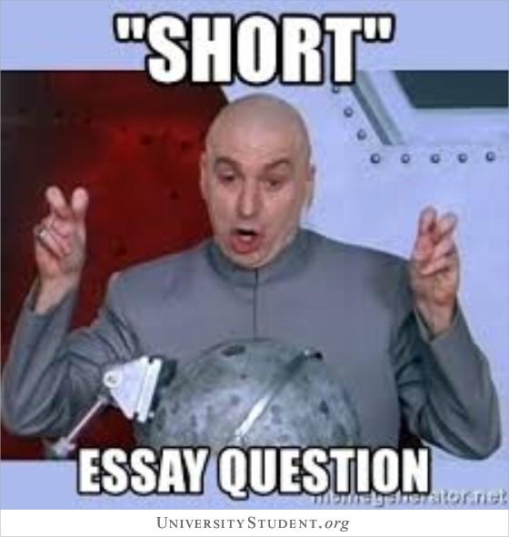 Short essay question