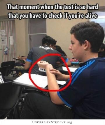 That moment when the test is so hard that you have to check if you're still alive