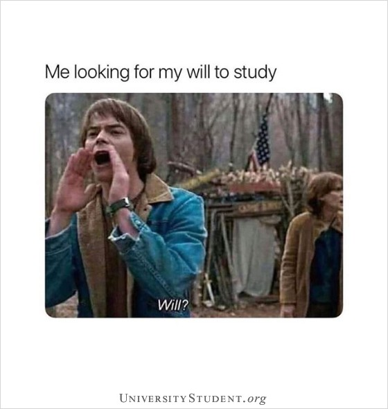 Me looking for my will to study. Will.