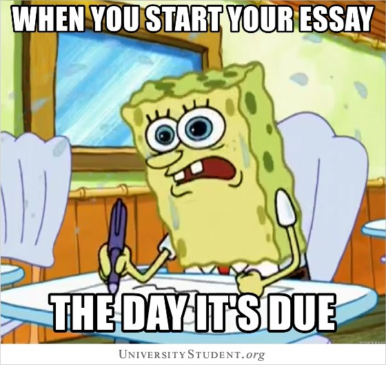 When you start your essay the day its due