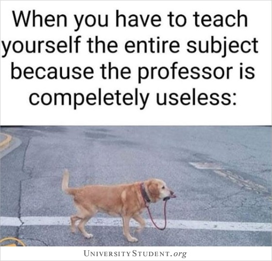When you have to teach yourself the entire subject because the professor is completely useless
