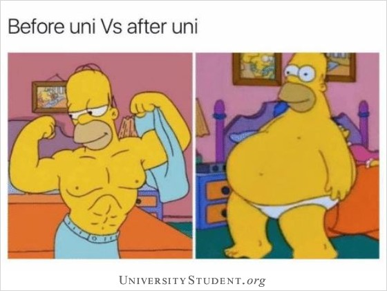 Before uni vs after uni