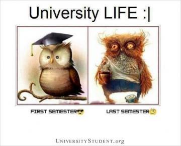 University life. First semester. Last semester.