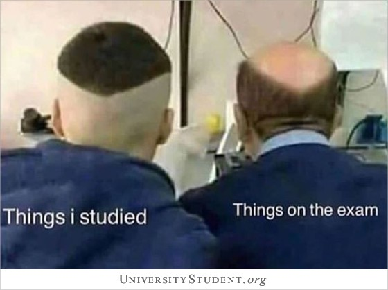 Things i studied. Things on the exam.
