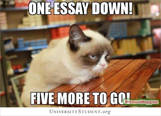 One essay down. Five more to go!