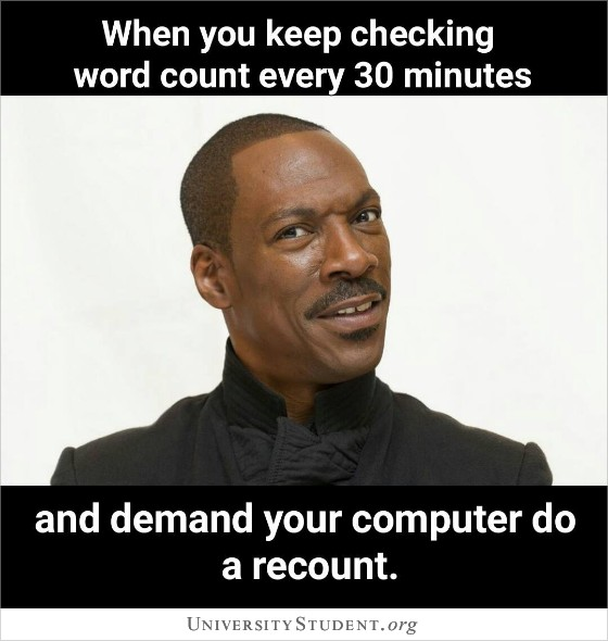 When you keep checking word count every 30 minutes and demand your computer do a recount