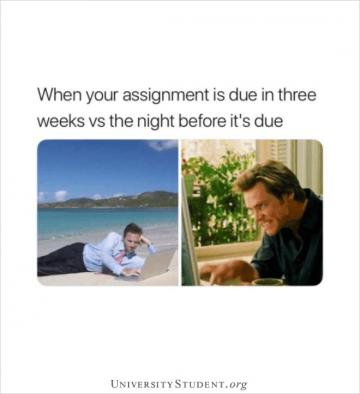 When your assignment is due in three weeks vs the night before it's due