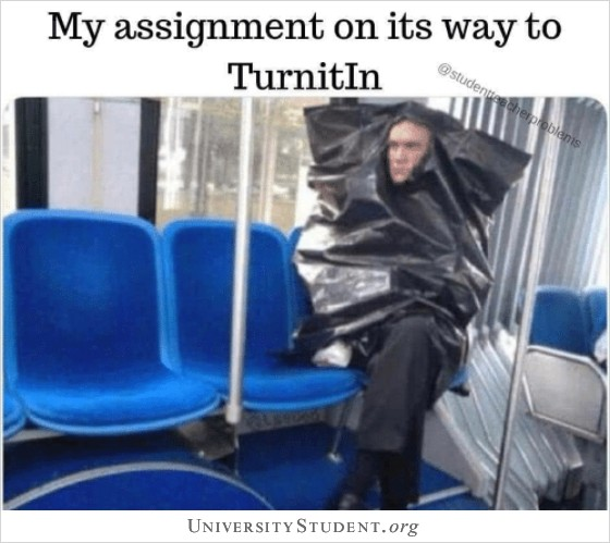 My assignment on its way to Turnitin