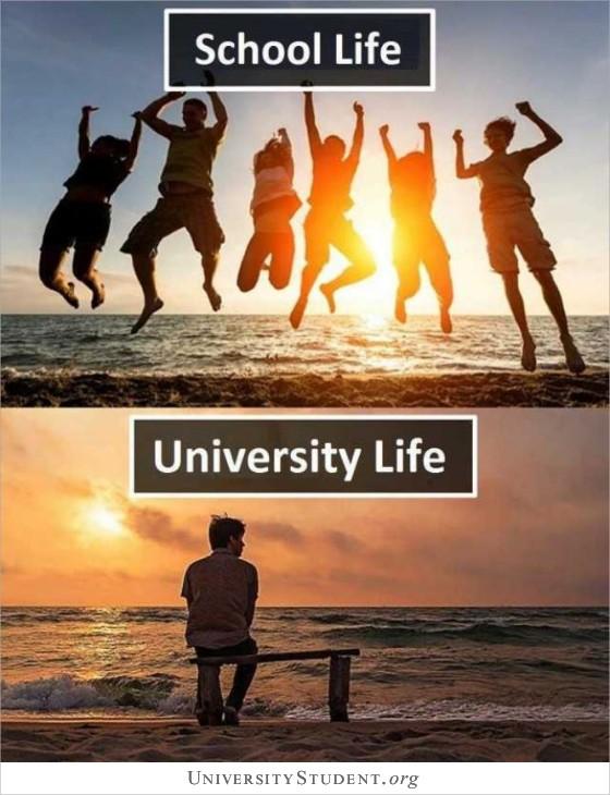 School life. University life.