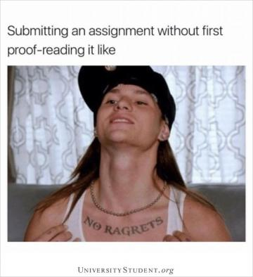 Submitting an assignment without first proofreading it like
