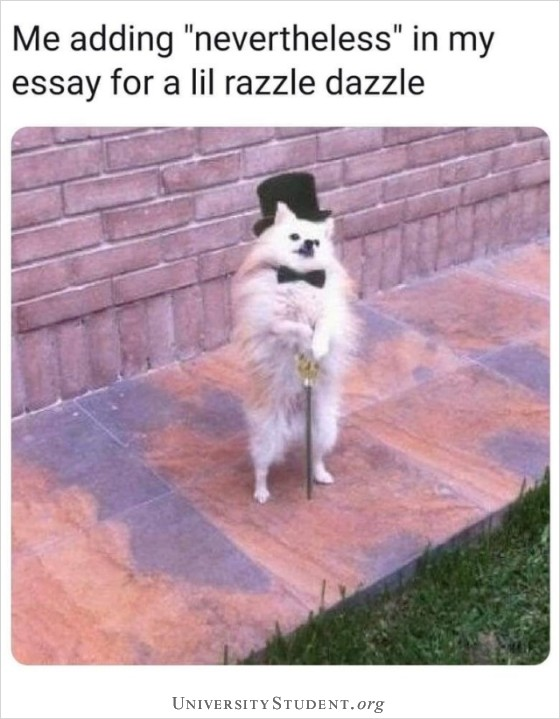Me adding nevertheless in my essay for a lil razzle dazzle