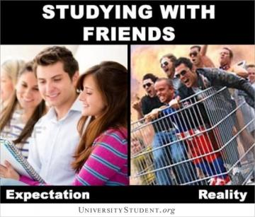Studying with friends. Expectation. Reality