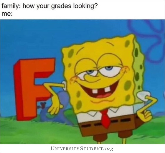 Family: how your grades looking?