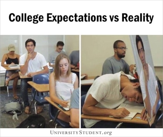 College expectations vs realty