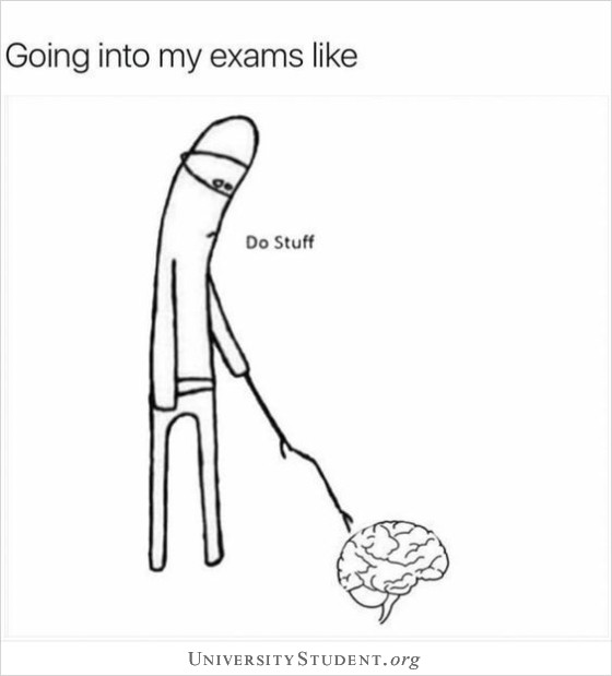 Going into my exams like. Do stuff.
